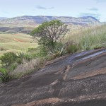 The end of the Tampoketsa of Ankazobe, along the road to Mahajanga