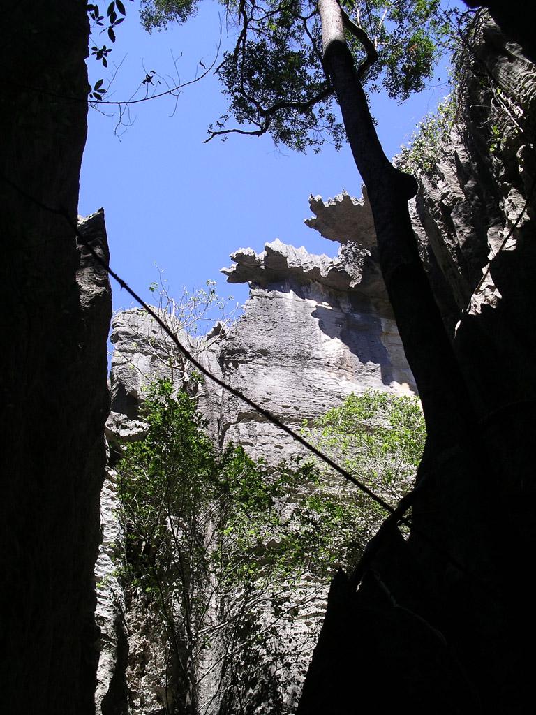 The tsingys of Bemaraha